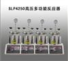 SLP4250高压多功能反应器