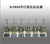 SLP650平行高压反应器