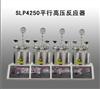 SLP4250平行高压反应器