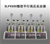 SLP4500微型平行高压反应器