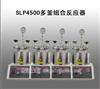 SLP4500多釜组合反应器