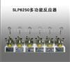 SLP6250多功能反应器