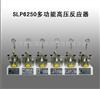 SLP6250多功能高压反应器