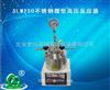 SLM250不锈钢微型高压反应器