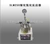 SLM250催化氢化反应器