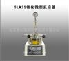 SLM25催化微型反应器
