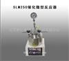 SLM250催化微型反应器
