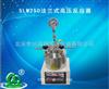 SLM250法兰式高压反应器