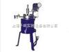 CJF-2 2L磁力搅拌高压反应釜