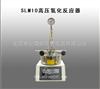 SLM10高压氢化反应器