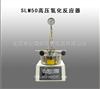 SLM50高压氢化反应器