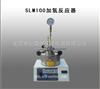 SLM100加氢反应器