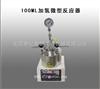 100ML加氢微型反应器