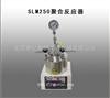 SLM250聚合反应器