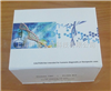 豚鼠LTD4 ELISA试剂盒