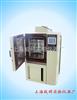 YSGDW-50步入式高低温箱