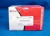 ANNEXIN V-FITC/PI凋亡检测试剂盒 CA1020