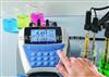 D10P-53碘离子测量仪