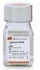 25030-081L-谷氨酰胺-200mM(100X)液体,100Ml