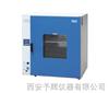 DHG101-6A电动鼓风干燥箱价格