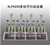 河南大量批发SLP4250多位平行反应器