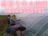 天津工程用Z好塑料布; 天蓝色加厚塑料布;天津大鹏塑料布价格便宜