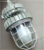 CCD94-W125 防爆無極燈|新黎明防爆無極燈|防爆無極燈廠家