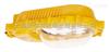 BFC8120A 一體式內場強光防爆燈 防爆路燈 武漢 浙江
