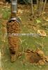 SLT-400土壤采样器