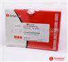 PC0030Lowry法蛋白浓度测定试剂盒   Solarbio蛋白定量相关产品