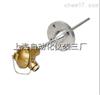 WRNM-430耐磨热电偶